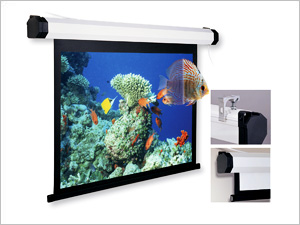 Projection Screens Collection